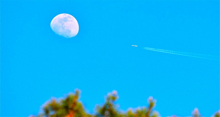 moon_12