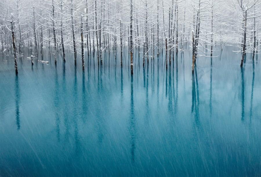 snow-on-a-blue-pond 8