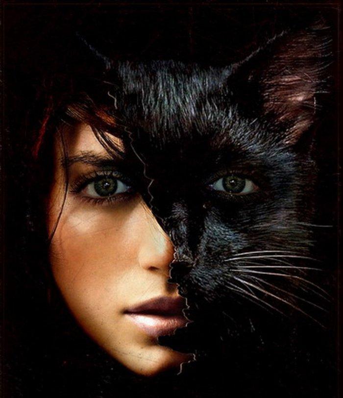 девушка-кошка