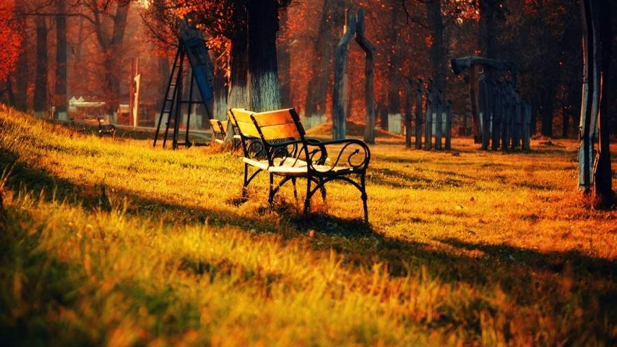 fall_03