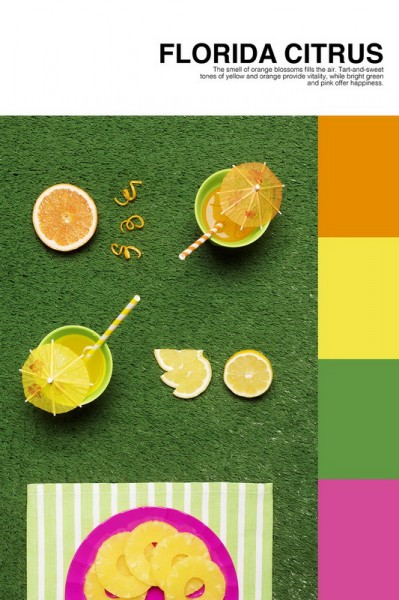 isabella-vacchi-color-coded-food-photography_02