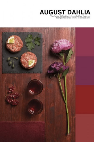 isabella-vacchi-color-coded-food-photography_04