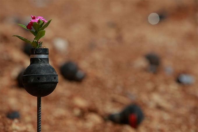 Flowers-Grown-Inside-Grenades1-640x441