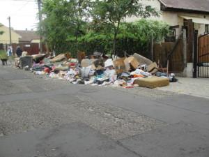 мусорка 164