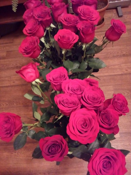 Розы, Крися прислала_На полу