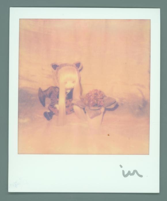 polaroid TAZ 2012-09 004 small