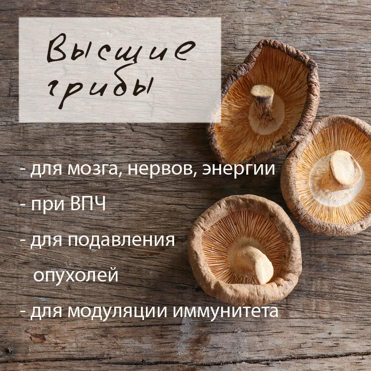 в грибы
