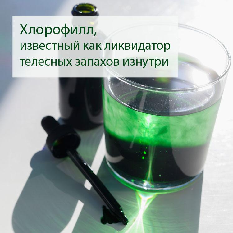 хлорофилл3