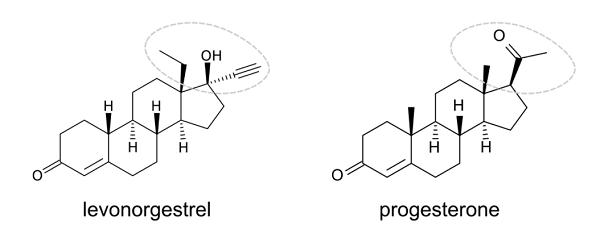 progestin-versus-progesterone