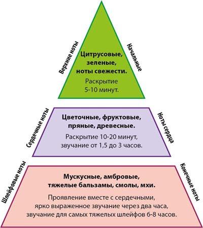 struktura_aromatov