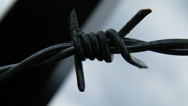 111457_1_barbed_wire_big