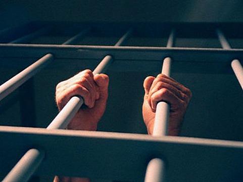 73605_1_2-year-donation-250-sentences.n