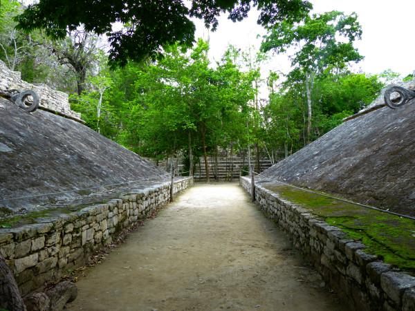 майя игра