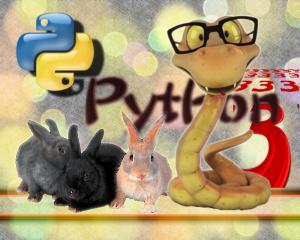 python3.png