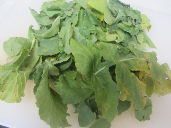 Mooli Leaves
