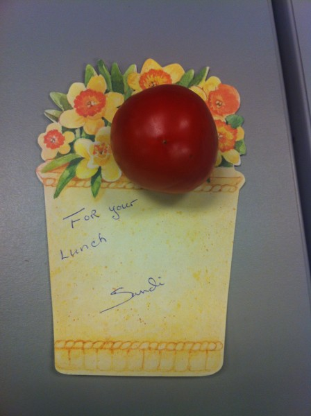 08282012 - Tomato from a friend's garden for my afternoon salad