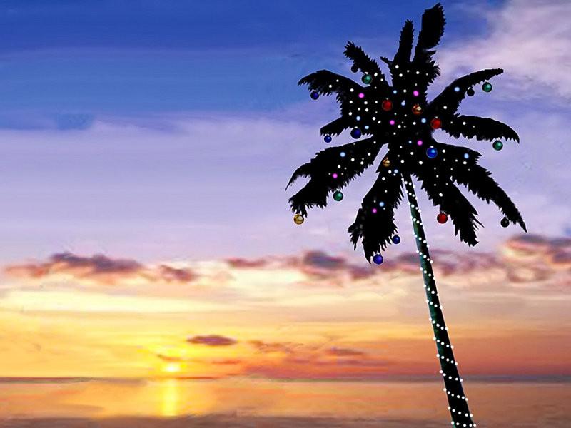 Island Christmas palm tree