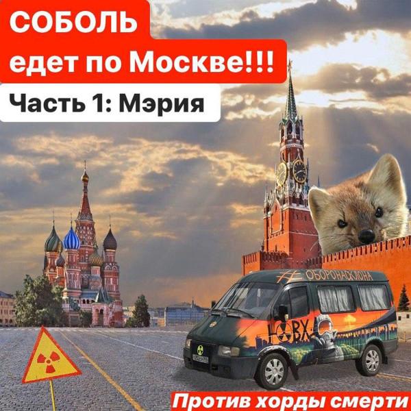 СОБОЛЬ ЕДЕТ В МЭРИЮ!!!