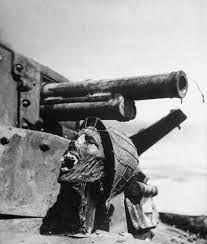 Skull on a tank at Guadalcanal