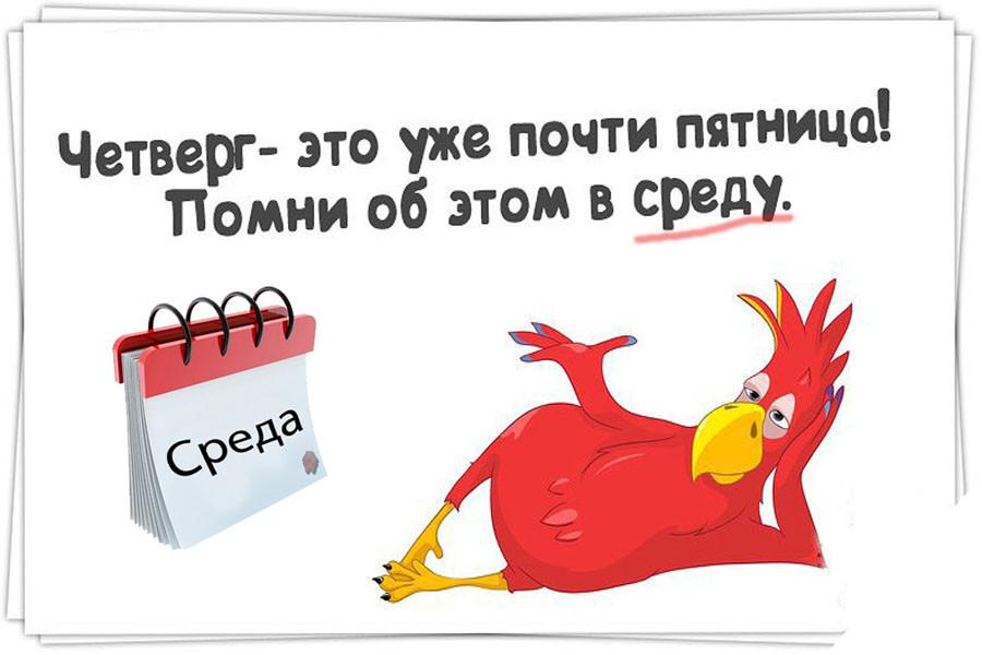 http://ic.pics.livejournal.com/invirostov/47072813/284897/284897_900.jpg