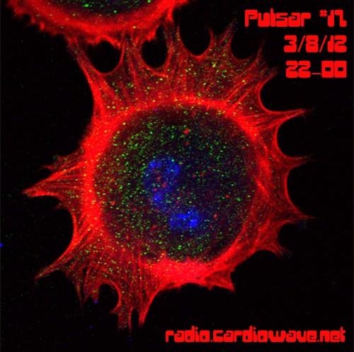Pulsar 17
