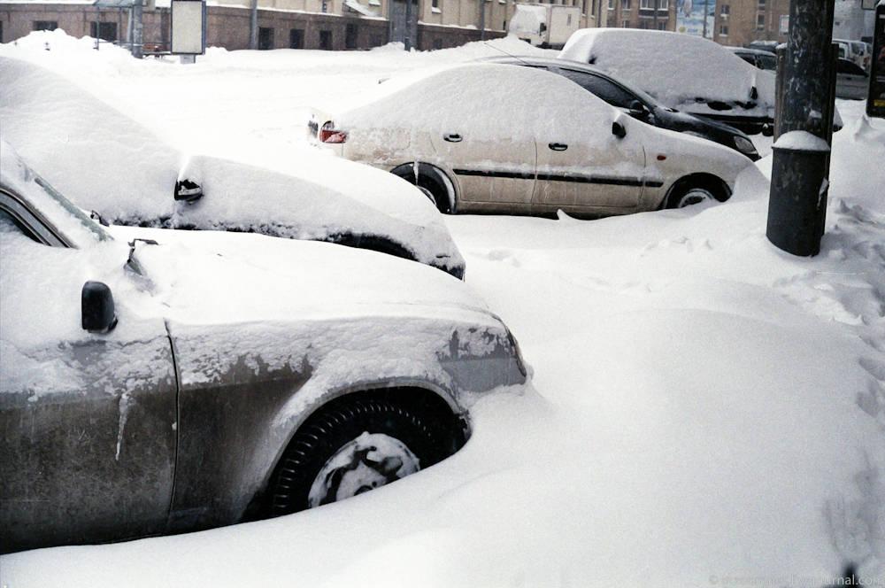 sneg-7