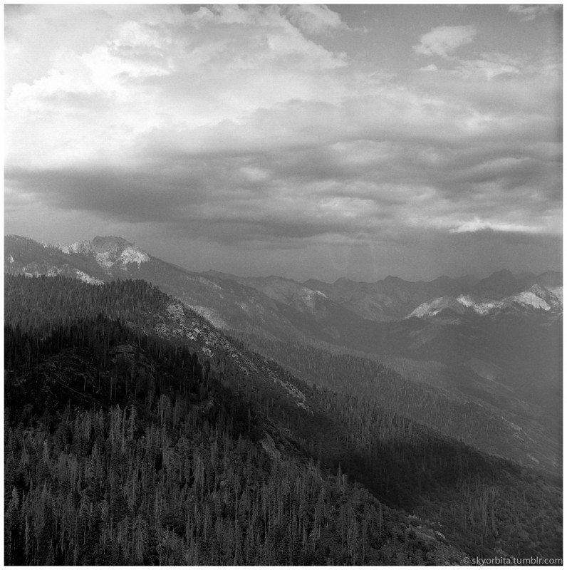 SequoiaPark02s.jpg