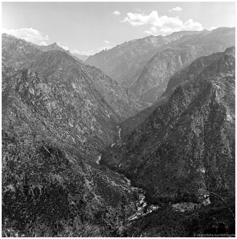 SequoiaPark04s.jpg
