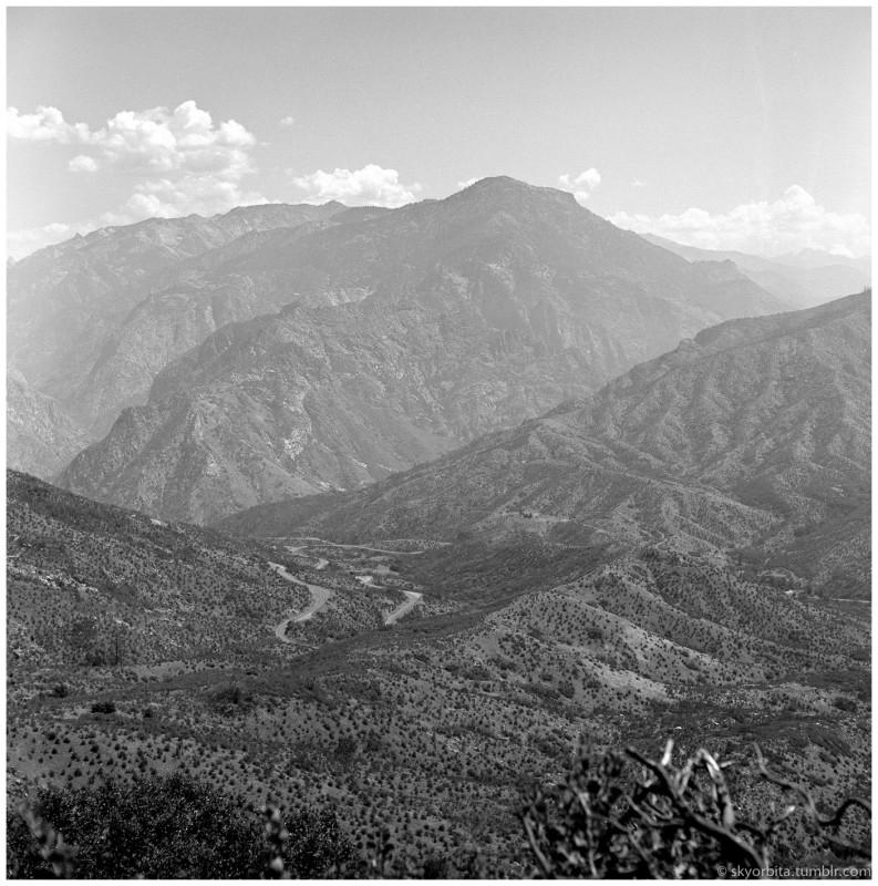 SequoiaPark09s.jpg