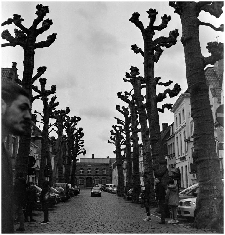 Bruges-0011.jpg
