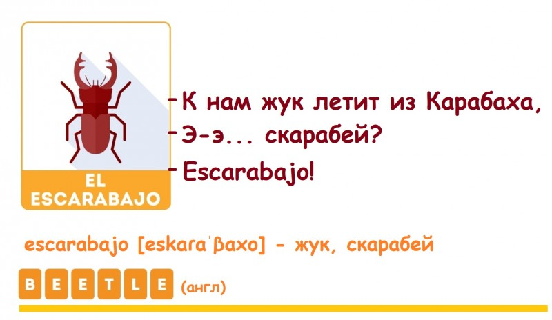 жук по-испански с транскрипцией