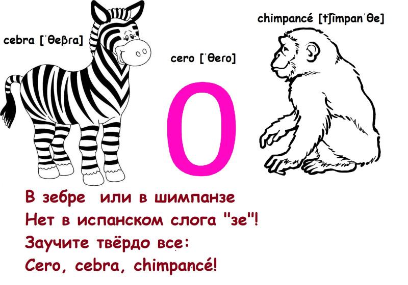 зебра по-испански с транскрипцией