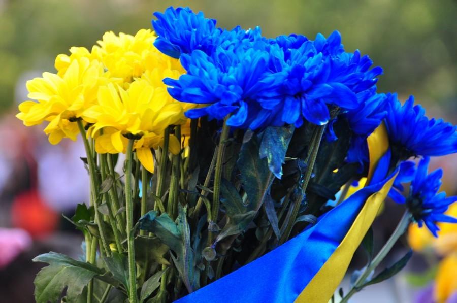 печать жовто блакитни картинки ефимович сейчас