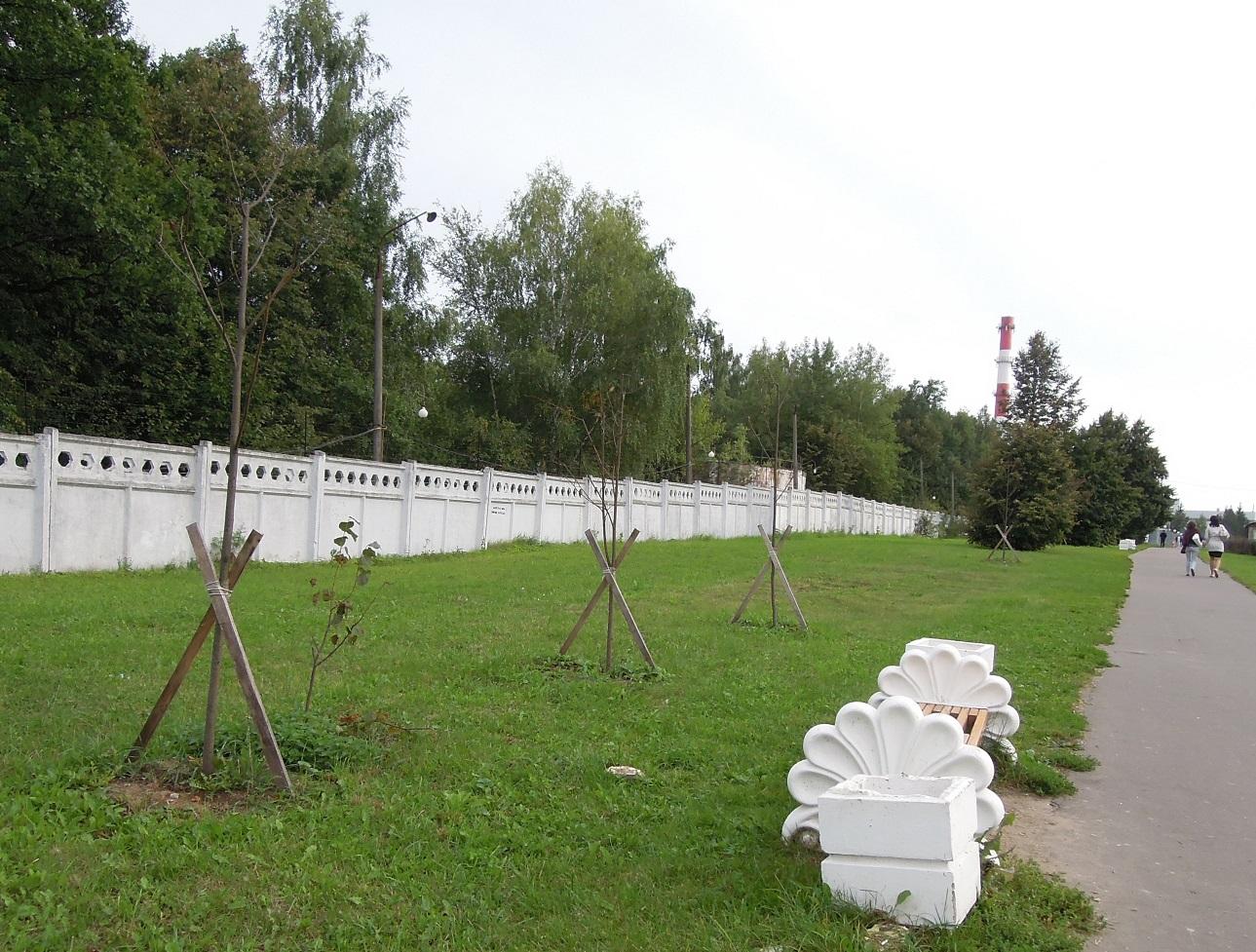 сухие деревья Троицк Октябрьский пр2