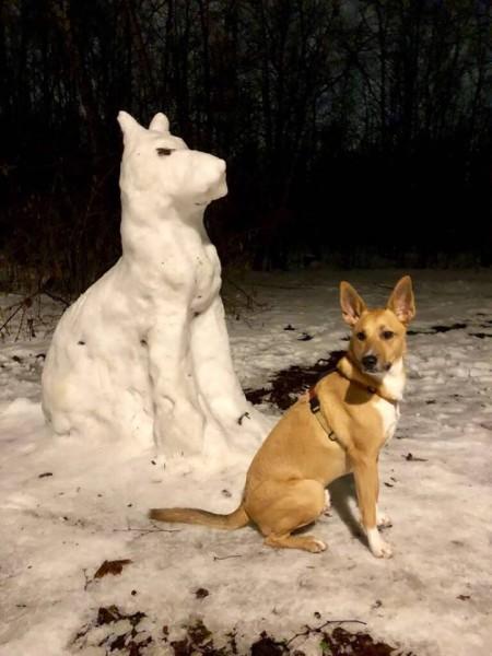 Чарли и собака