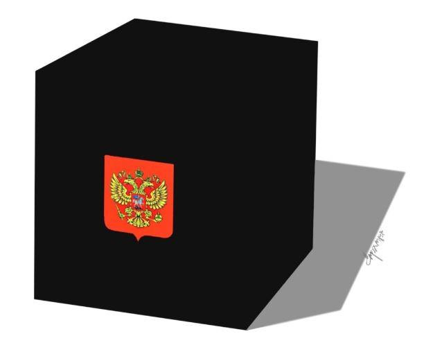Выборы Приморье