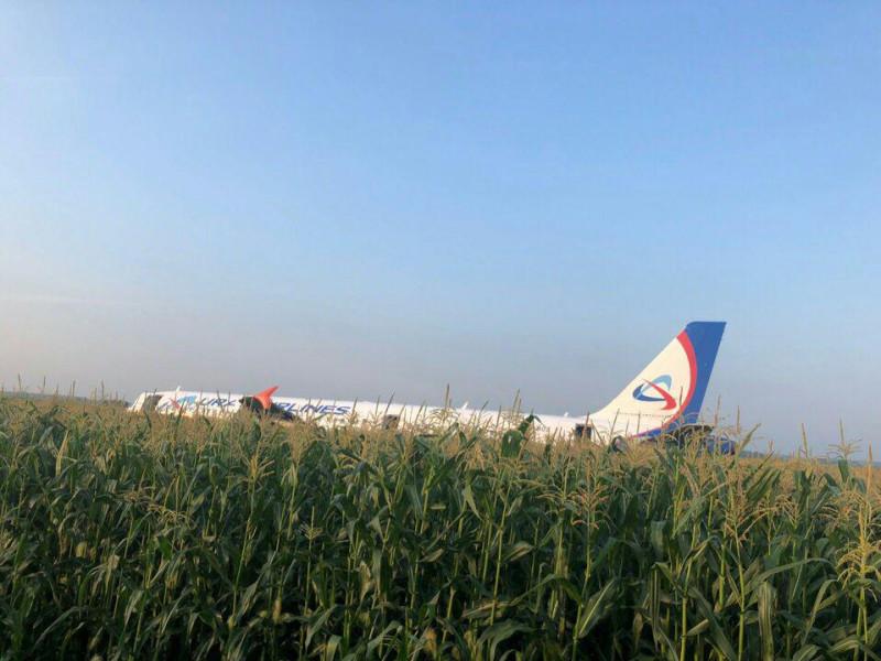 Самолет в поле