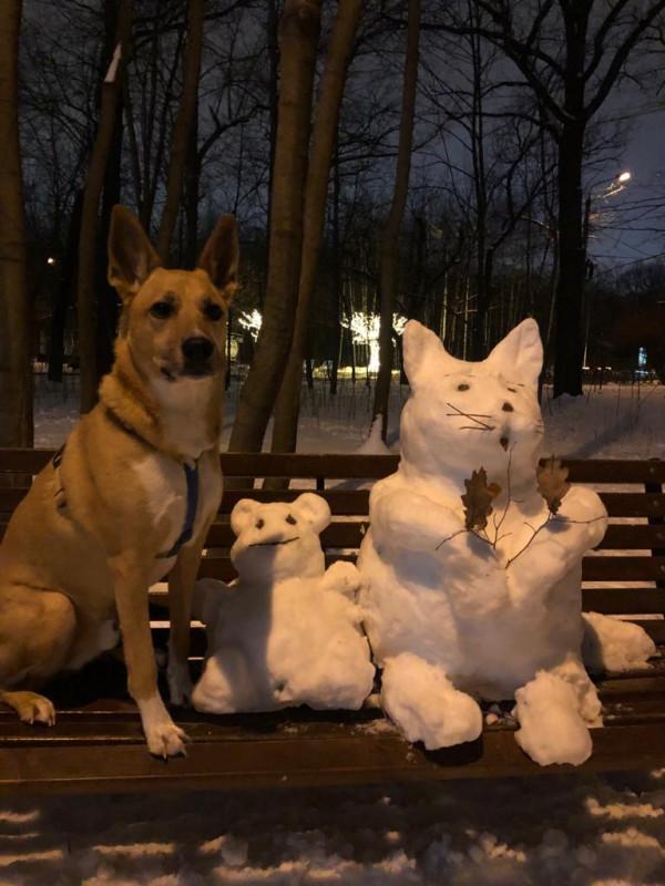 чарли и друзья