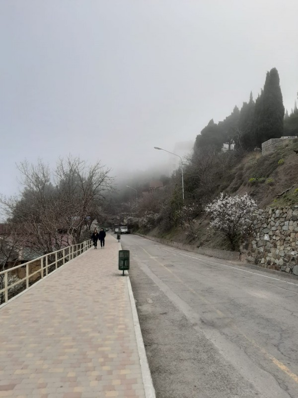 Крым в тумане