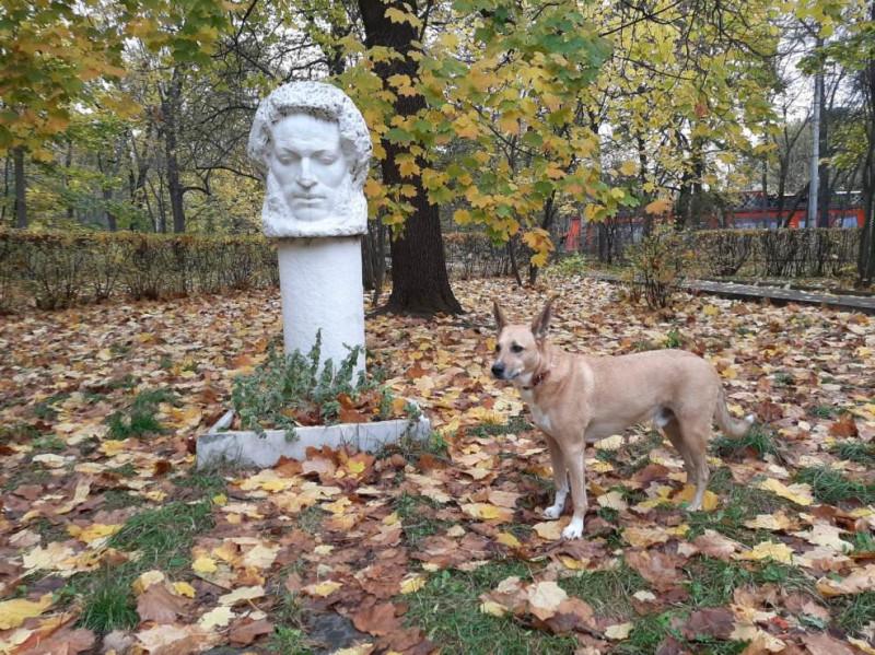 Чарли и Пушкин