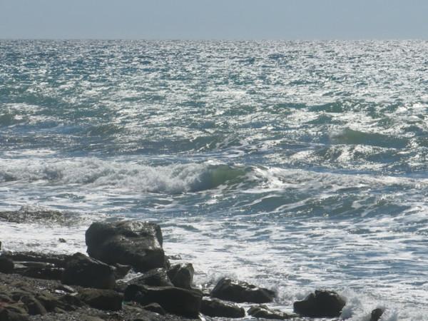 жж море