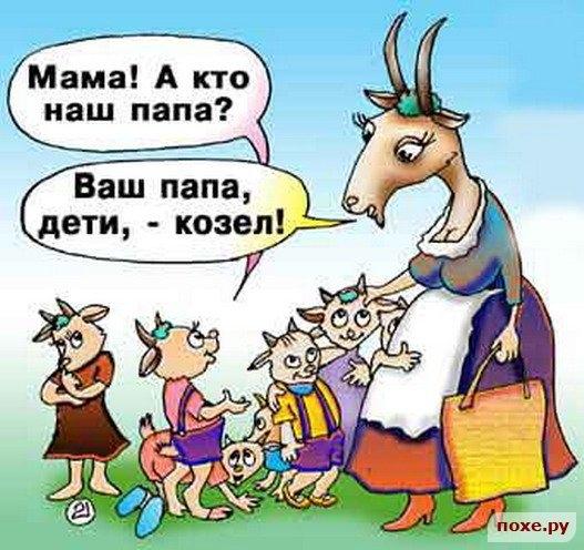 Папа - козёл