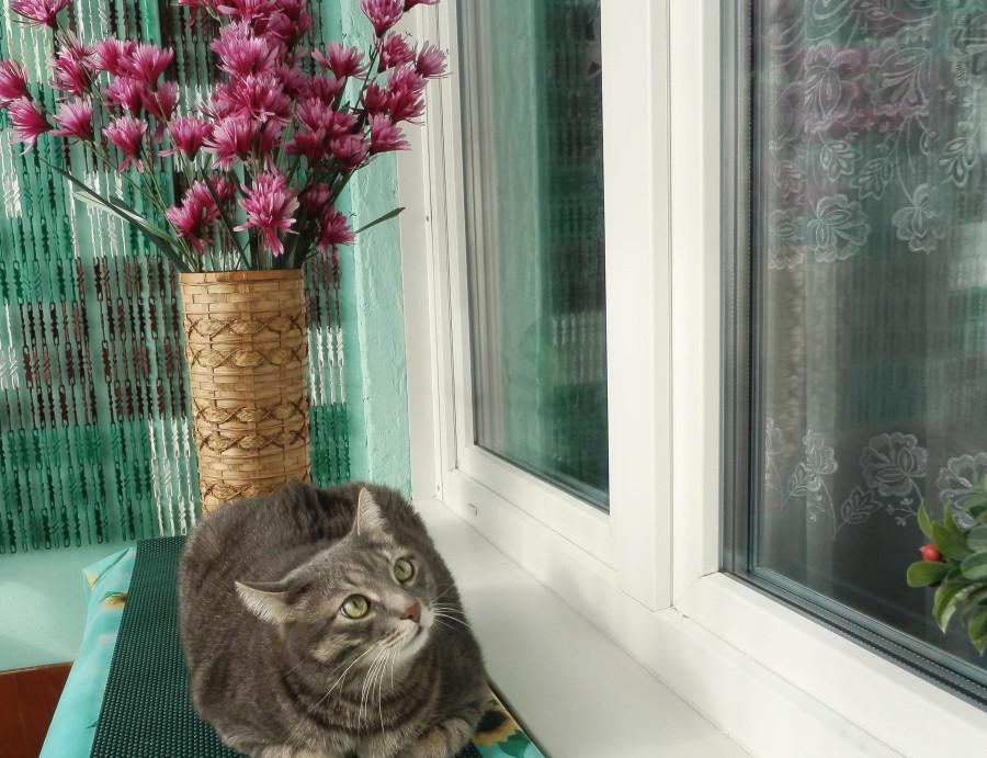 Тарас с цветами