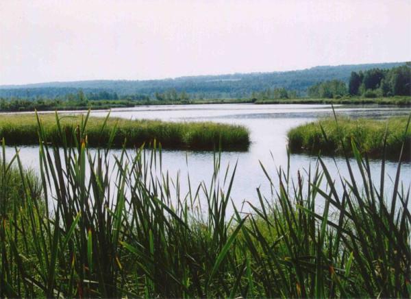Шушенское озеро
