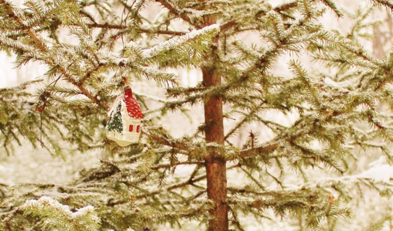 Лесной Новый Год