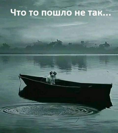 https://ic.pics.livejournal.com/irin_v/12674477/486267/486267_original.jpg