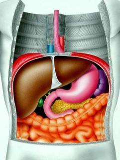 Прогрессирование цирроз печени