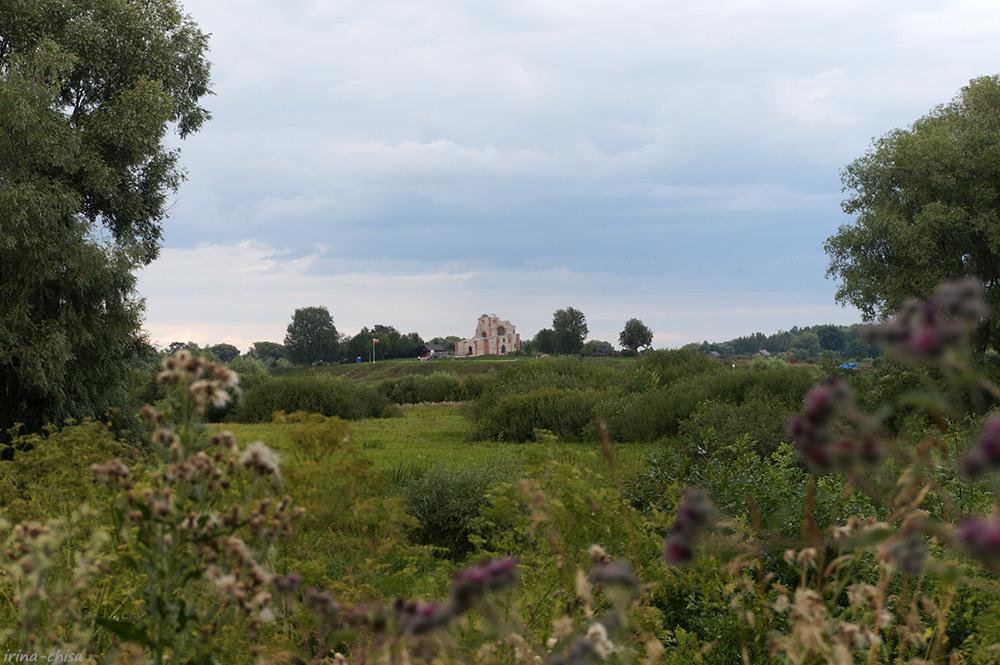 Руины Благовещенского собора