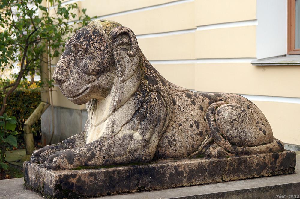 Дворцовый лев