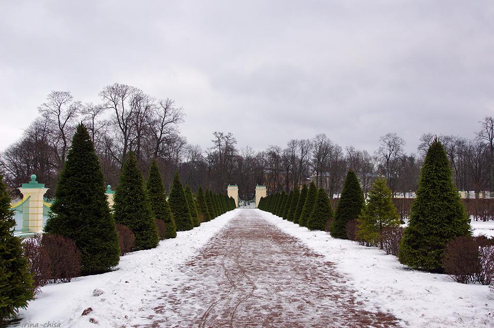 Нижний сад
